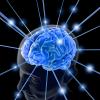 Как развить память?