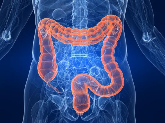 Как восстановить кишечник после антибиотиков?
