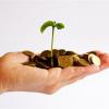 Как получить грант на развитие малого бизнеса?