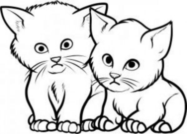 Как нарисовать котёнка?